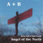 Angel of the North CD Cover